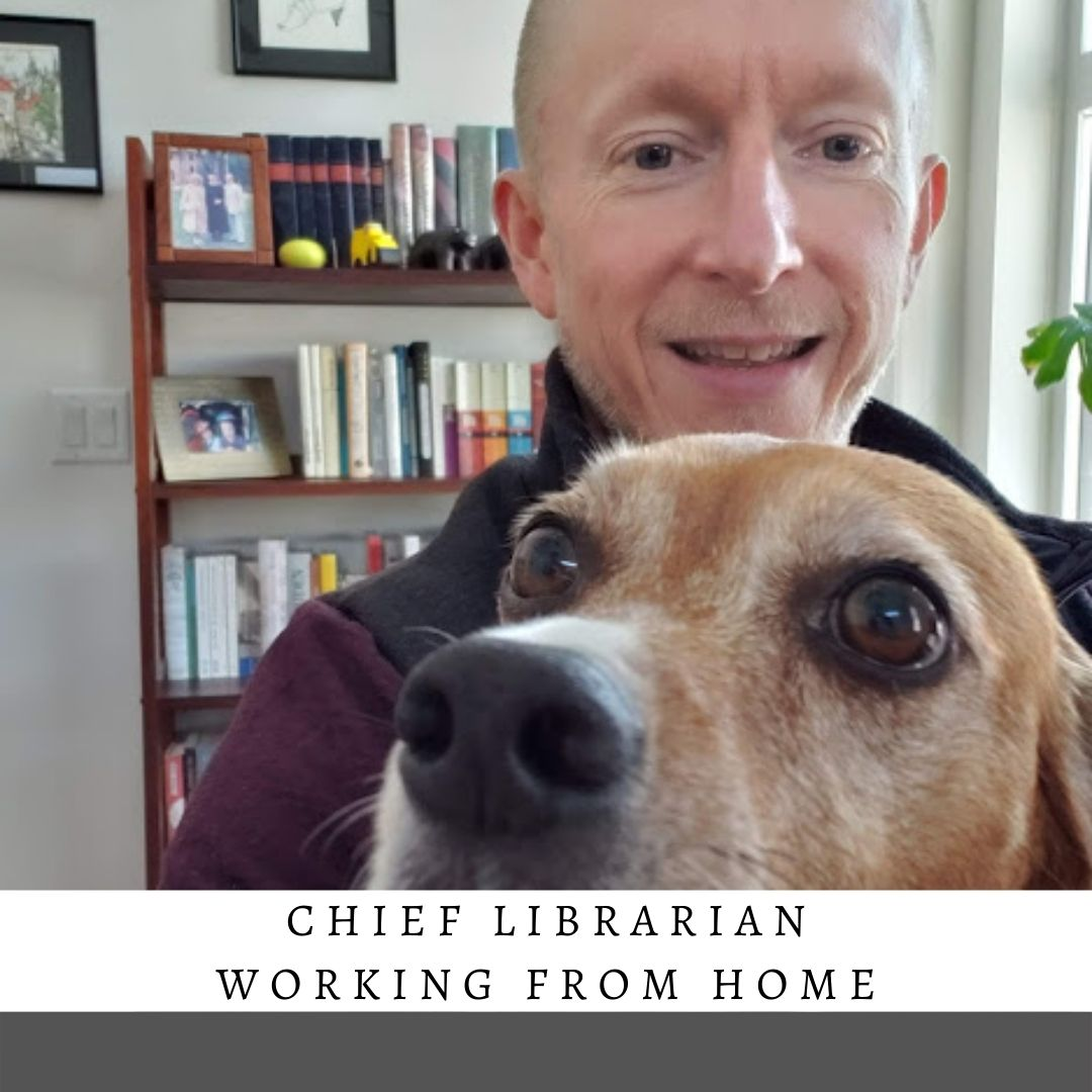 chief librarian working from home