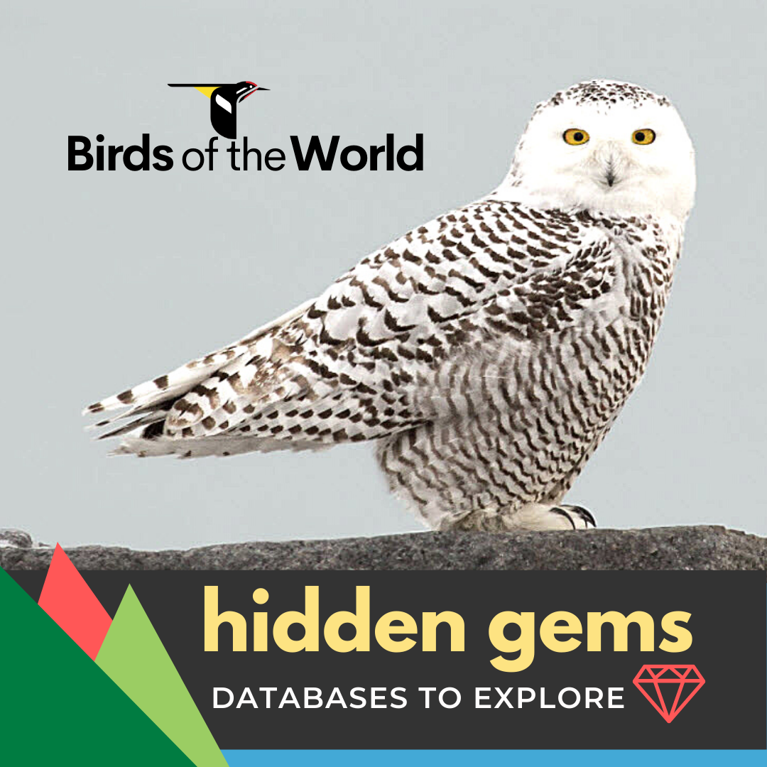 Databases to Explore: Birds of the World